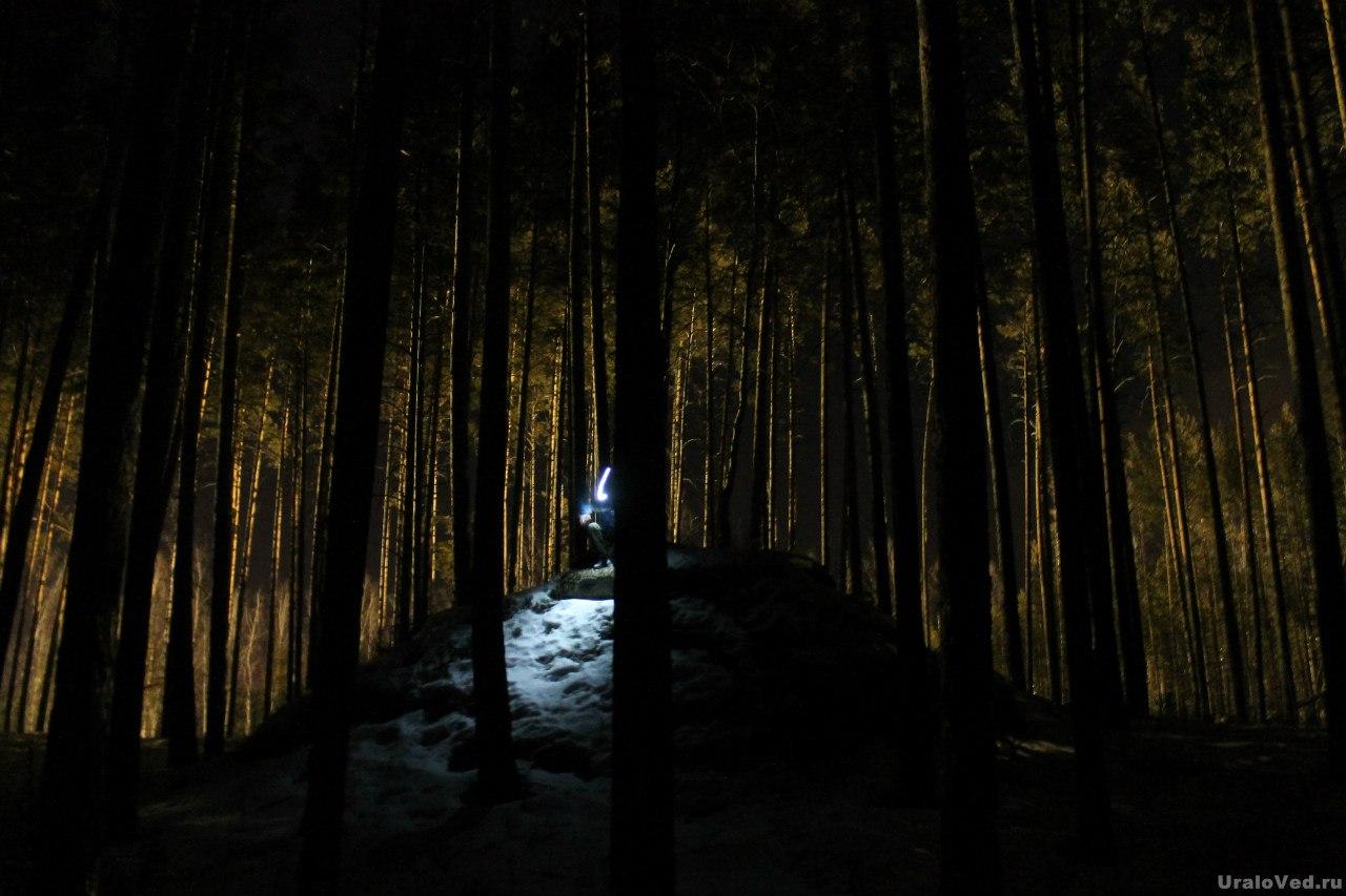 Скалы в ночном лесу