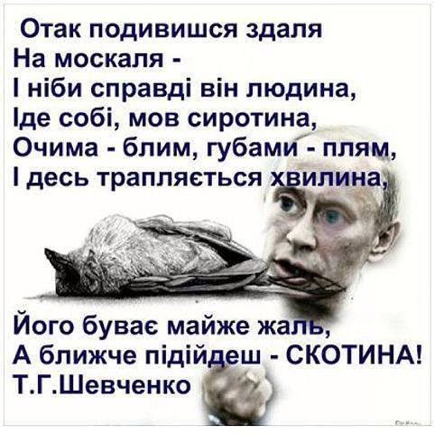 Крупнейший европейский банк отказался обслуживать счета российских олигархов Ротенбергов из-за санкций, - СМИ - Цензор.НЕТ 8068