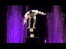Цирк Аквамарин. Шоу Зачарованный город - 2 2014