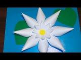Как сделать лилию своими руками (аппликация из бумаги)