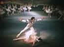 Большой концерт фильм 1951