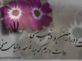 Gole Man Hamid Askari