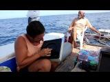 Недолговечность вещей в океане, www.ocean.energydiethd.com