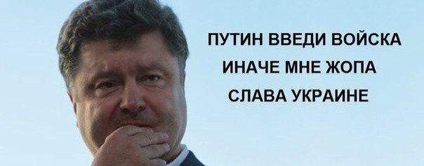 Путин, введи!