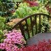 сад огород дача банька