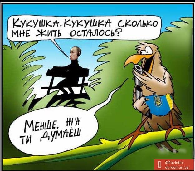 Во время учебных стрельб в село на Днепропетровщине залетел снаряд - жертв нет, - Минобороны - Цензор.НЕТ 2658