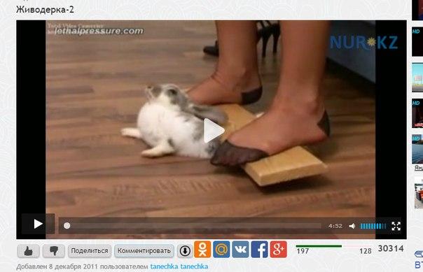 Foot Fetish Sex Porn Videos  Pornhubcom