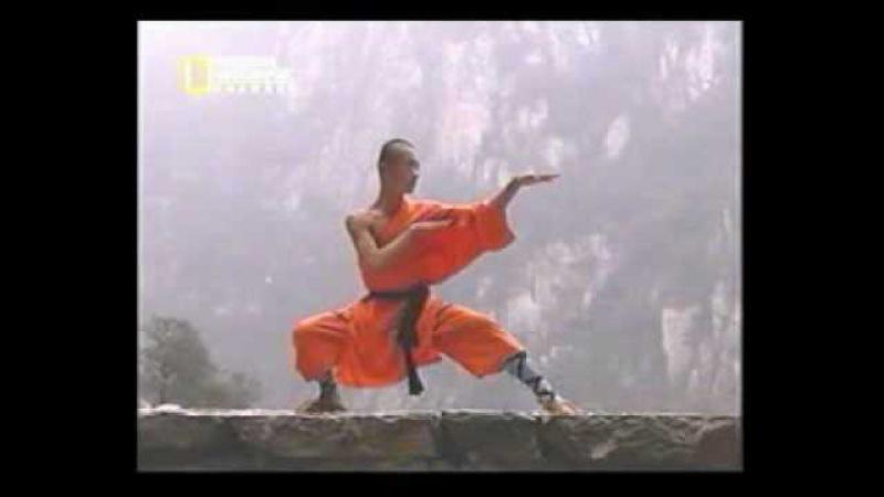 5 Tecniche Shaolin Kung Fu