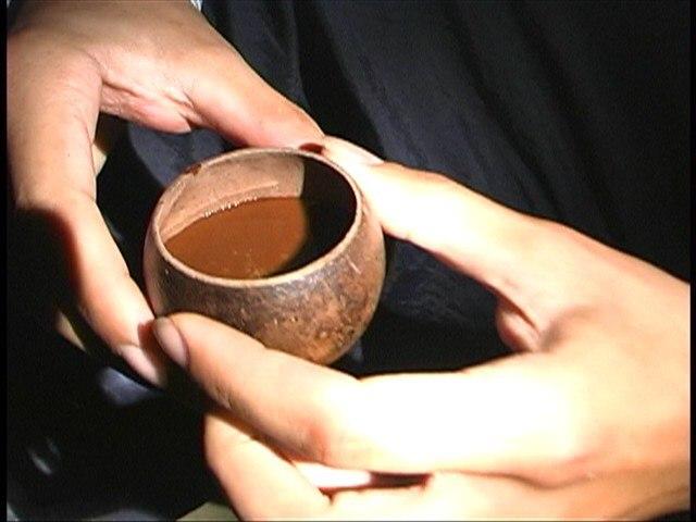 Яхе. Шаманы Амазонки