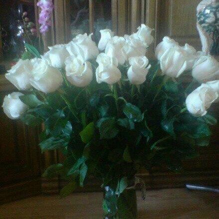 Фото белых роз в вазе