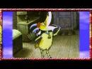 Цыпленок пи