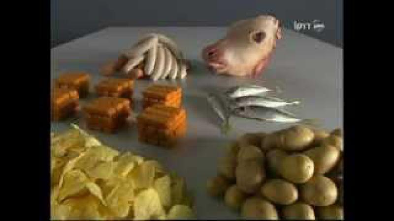 Дизайн еды - design food. Как придумывают форму и внешний вид продуктов