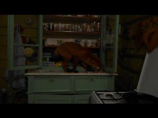 Лиса забралась в дом и сожрала все конфеты.