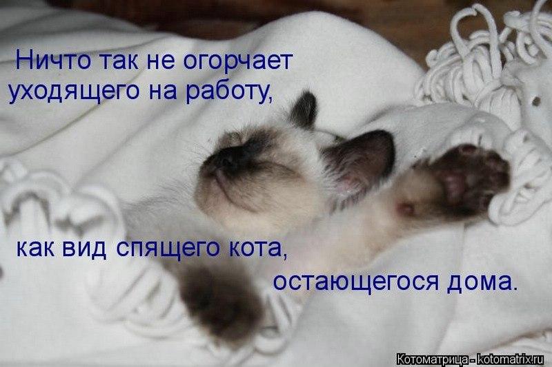 https://pp.vk.me/c622520/v622520916/47cf9/sOJEylOzq0c.jpg