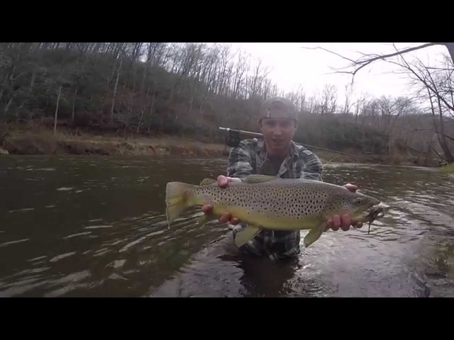 Fly Fishing Trout- Mouse