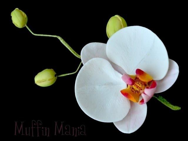 Orchidea in pasta di zucchero,TUTORIAL PASSO PASSO,Semplice e Veloce