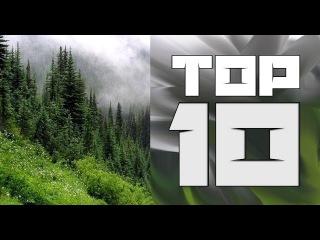 Топ 10: Фильмов которые стоит посмотреть!