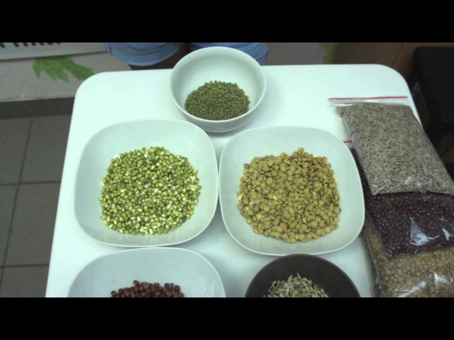 Сыроедение Живая еда Как замачивать и проращивать семена?