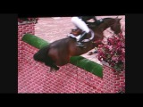 Puissance WIHS - Horse jumps 7 foot wall!