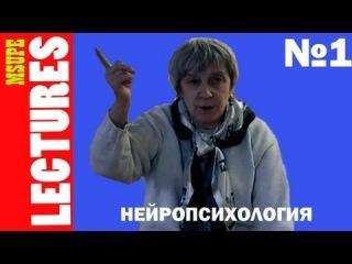 """""""Нейропсихология"""" лекция №1 Ахутиной Т.В."""