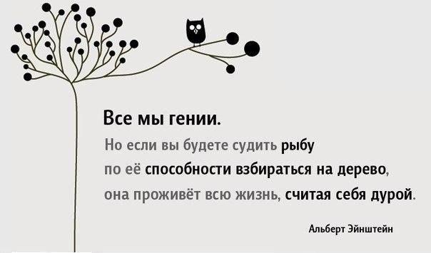 Отцвели цветы, падают листья, птицы молчат, лес пустеет и затихает.ОСЕНЬ. - Страница 2 QOOgFSUuauI