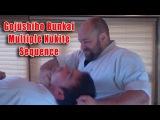 Practical Kata Bunkai: Gojushiho Multiple Nukite Sequence