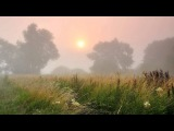 Жанна Бичевская-Туман