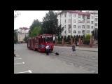 Что происходит если животное попадает на дорогу Украина VS Россия