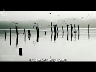 [Black Rose] Газэ - Инкубус (рус. саб)