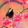 Элька Урусова