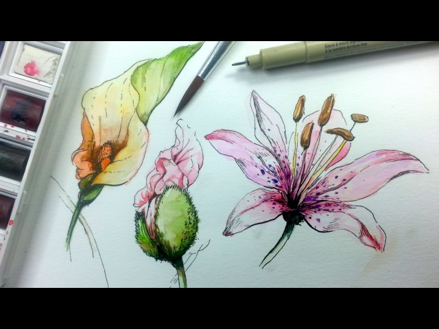 How to Draw Paint Flowers with Ink and Watercolor Part 1