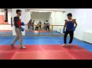 Dance Kung fu ( JEED KUNE DO )