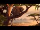 Смешное видео про полных и толстых животных Прикольный и забавный ролик 16689