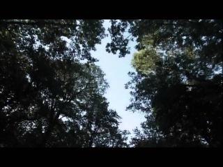 Девять жизней Нестора Махно Серия 07 (2007)