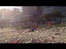 массовая драка на пляже