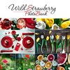 WildStrawberry PhotoBank | фотокартины |