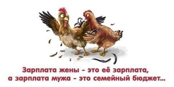 https://pp.vk.me/c622527/v622527940/4d8d/J9Eg-gArsE4.jpg
