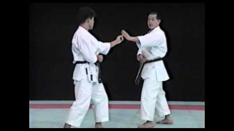 Seiji Nishimura Best Karate Punch Techniques