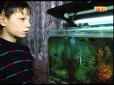 История детей из детского дома (Междуреченск)