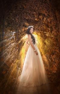 Розыгрыши свадебного платья