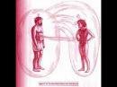 Надежда Токарева: Технология прощения и покаяния. Что происходит на самом деле?