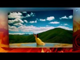 Ретро 70 е - Ринго Старр- Only You (клип)