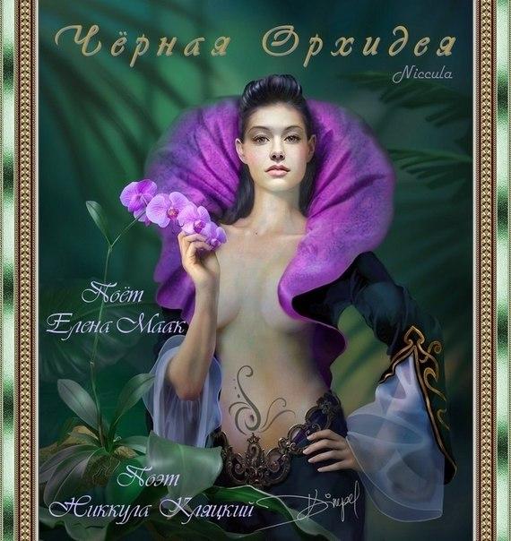 Альбом: Чёрная Орхидея Поёт Елена Маак. Поэт Никкула Кляцкий