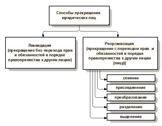 Порядок образования юридического лица. схема