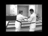 Taira Bunkai 2010 seiyunchin training notes Part 1