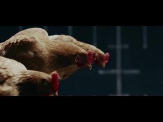 Hollaback Chicken