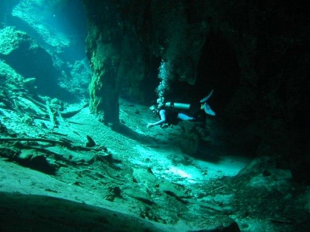 сенот анжелита. мистическая подводная река в мексике мистическая подводная река сенот анжелита находится в юго-восточной части мексики на полуострове юкатан, около древнего города майя под