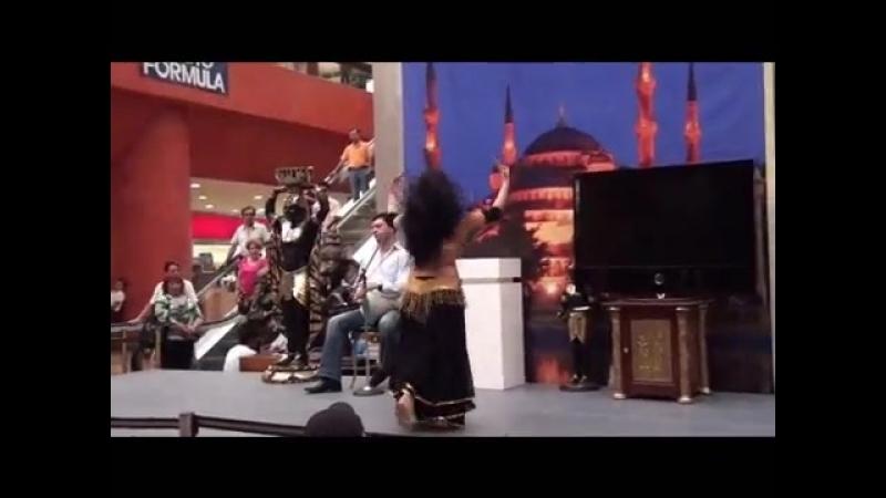 Sandra Harir Fadi Saadi Exposición de culturas del medio oriente