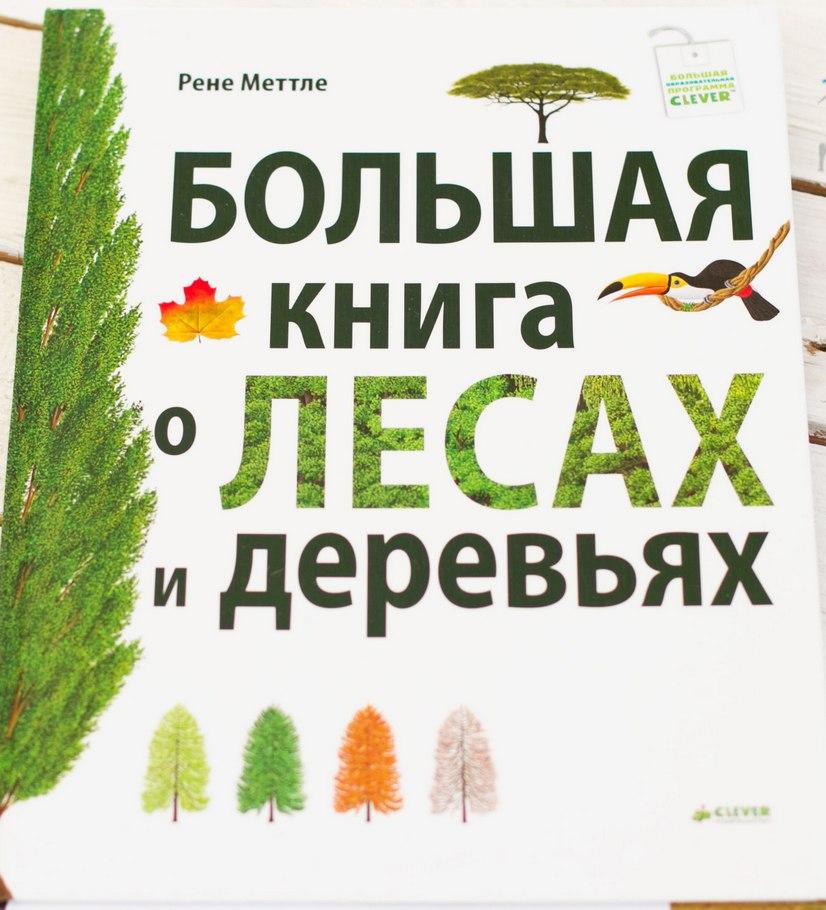 Книга о деревьях для детей