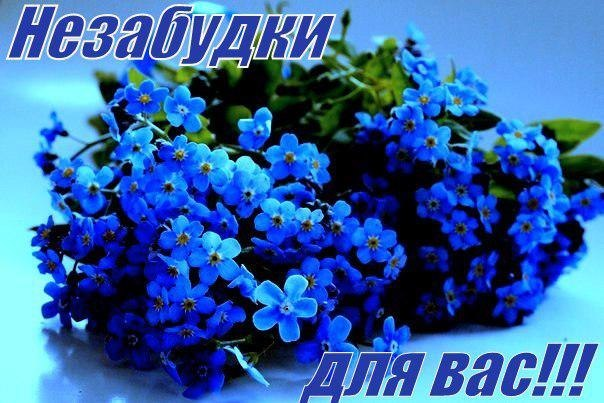 http://cs622531.vk.me/v622531818/392e0/o75BNqTk1tY.jpg